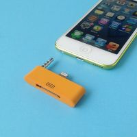 Audio Adapter Lightning 30 pin to 8 pin iPhone 5 - iPad Mini- iPod Touch 5 and Nano 7